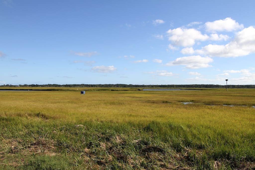 Stunning views of the marsh await from inside and outside the house.