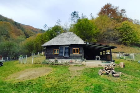 Cozy hut in the wild nature of Romania