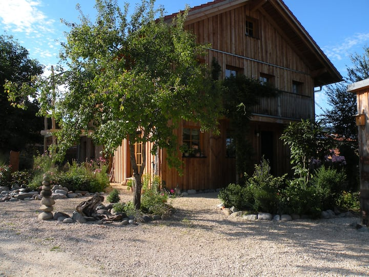 Helles Studio mit Küche in Holzhaus