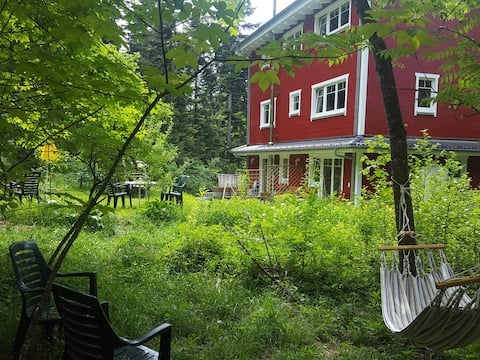 Apartment on the edge of the forest in Eichenberg