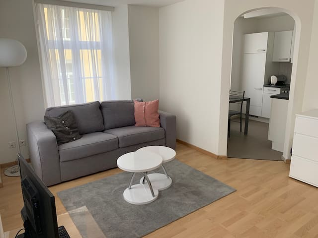 Neue renovierte 3 1/2 Zimmerwohnung bis 8 Gäste