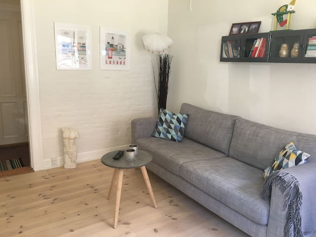 Cozy appartment in central Odense