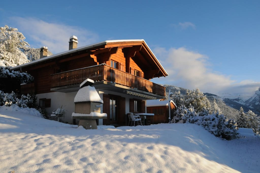 Chalet and garden in winter