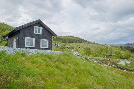 Modern Cabin near Glaciers and Fjords Ski inn/out