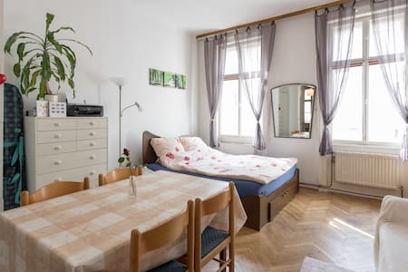 Cosy flat by the main train station - 維也納 - 公寓