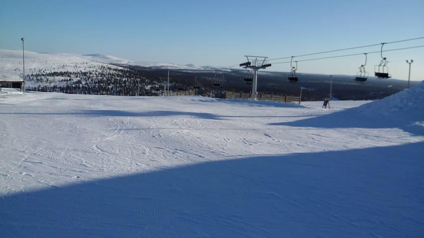 Saariselkä, Lappi, Inari - Inari - Daire