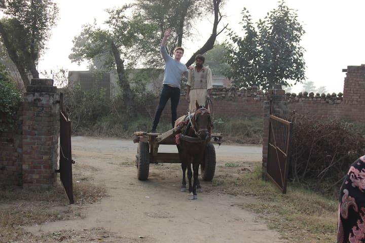 Syed Farmhouse - Chaura Rajputan - Holiday home