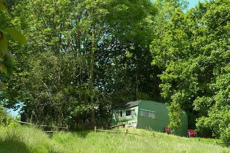 Gracie the vintage caravan - Forest Coal Pit