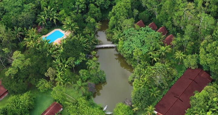 Eco Lodge Salve Floresta • Bungalow for 2 Persons