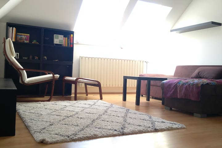 Penthouse appartement close to city center.