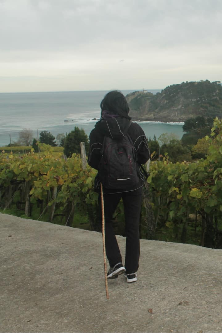 Admiring the vineyards around Getaria