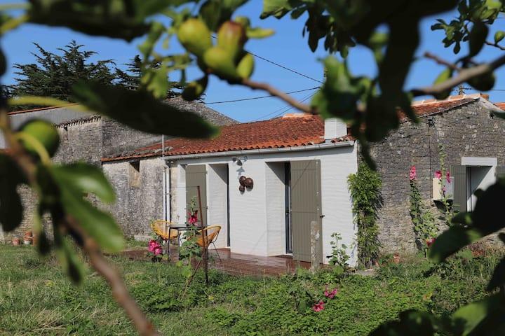Maisonnette dans canton typique de l'ile d'Oléron