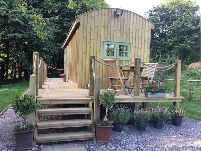 Hut in summer