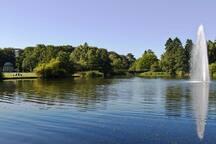 Fælledparken - Big nature park