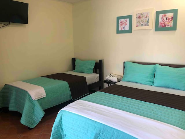 2-Room 1-3 people Baño privado 2.9 SJO Airpt