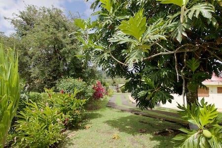 Belle maison, au cœur de la Martinique ! - Le Lamentin