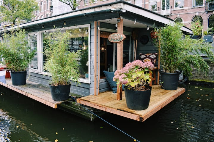 Cozy Houseboat in the center of  Amsterdam.