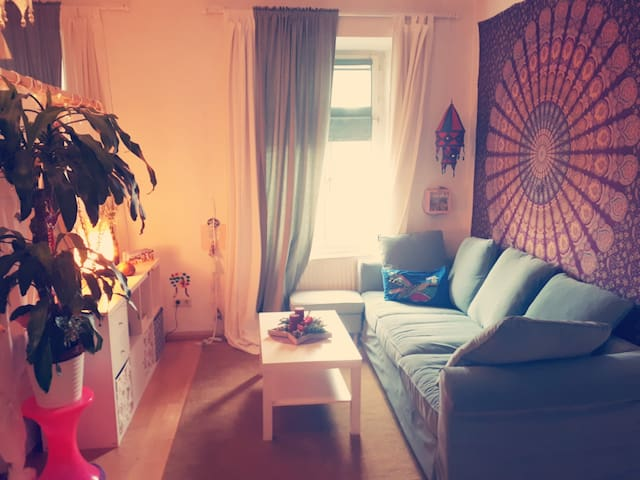 Large and cozy Room in the centre of Innsbruck