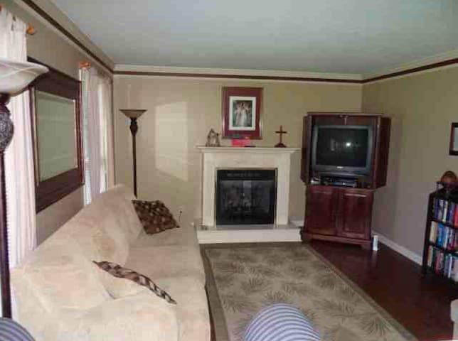 Living Room-Large Sofa