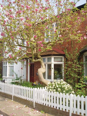 Richmond cottage - Hidden gem in Greater London