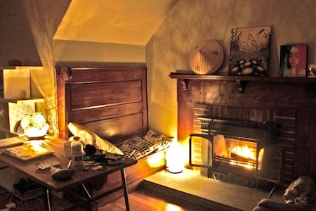 Cozy Retreat with Fireplace in downtown Arlington - 알링턴(Arlington)
