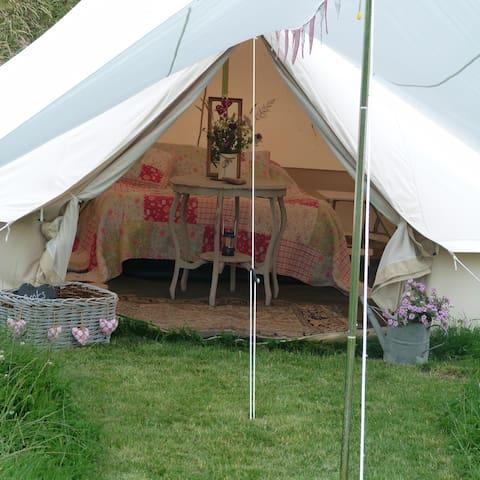 Dewflock Farm, Dorset Farm Camping - Dorchester - Tent
