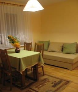 Apartament  dla rodziny  2 + 2 - Stronie Śląskie