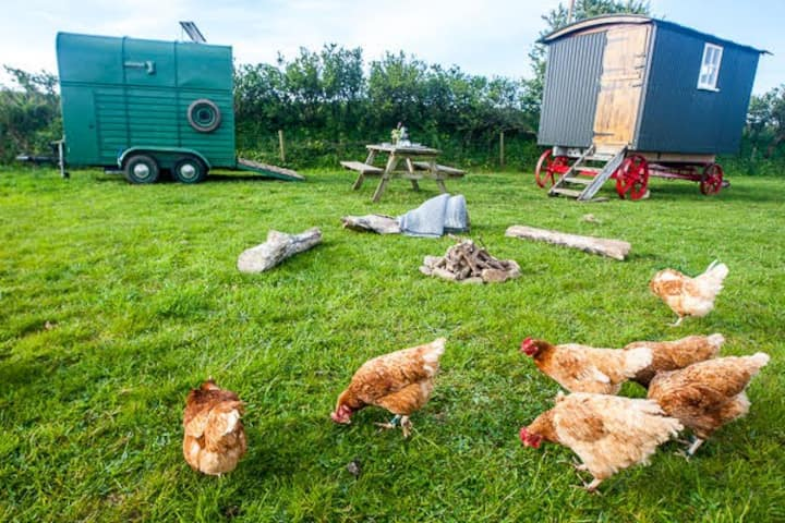 'Isopel's Wagon' Shepherds Hut - East Portlemouth