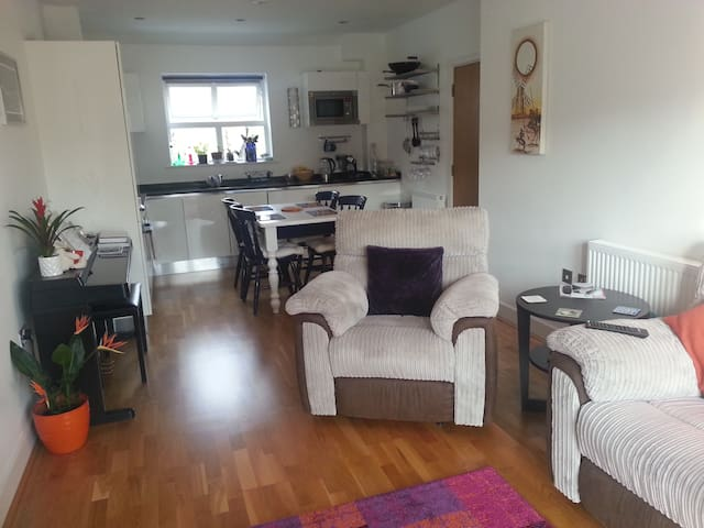 Double Room and Own Bathroom near Stansted Airport - Hertfordshire - Apartment