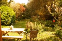 Garden view from Lodge