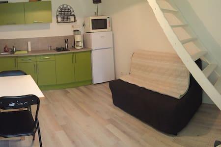 Studio 3/4 pers. tout Confort - Vacheresse - Apartemen