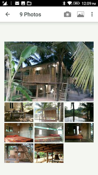 Omgravity tree house terrace treehouses for rent in for Terrace 6 pub indore