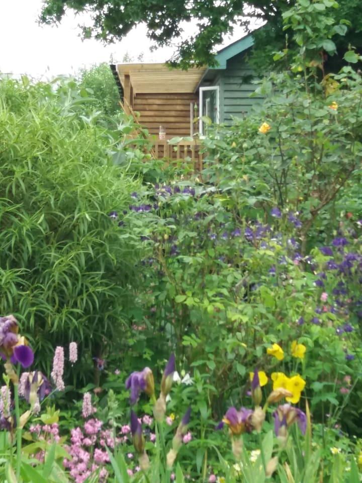 Pretty gardens surround the cottage.