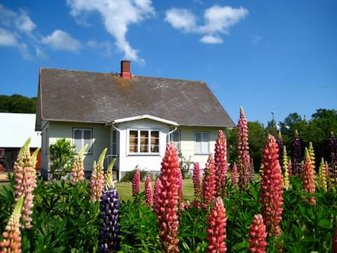 Charming summerhouse