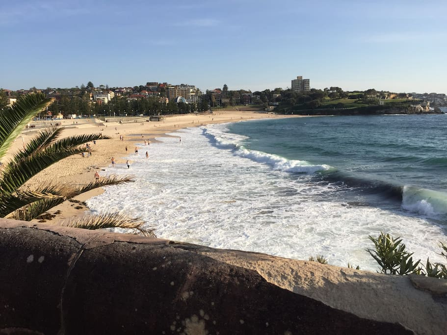 Coogee beach just 400m walk from the apartment!