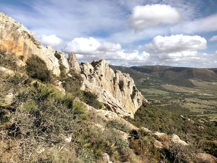 Cresta de San Bartolo