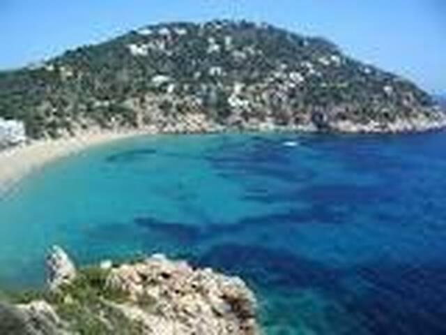 Ibiza pura
