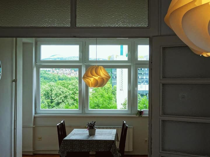 Spacious and sunny apartment with a view!