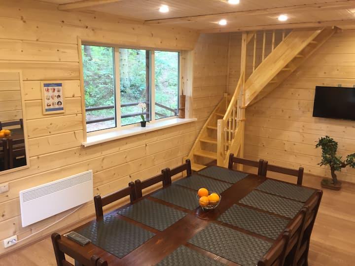 Дом со столом и светомузыкой на 12 человек