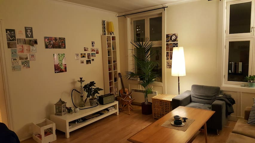 Big room in spacious appartment in lovely Sagene! - Oslo - Byt