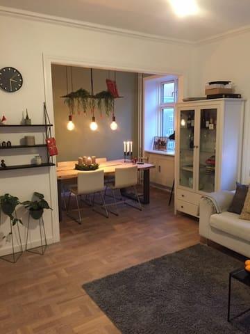 Cozy apartment in Copenhagen