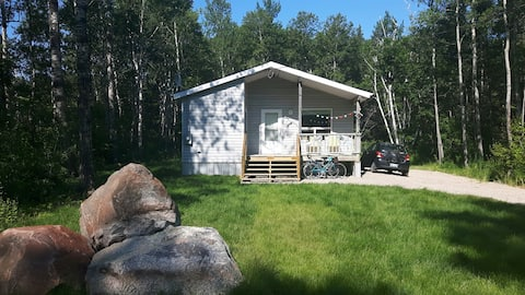 Pet Friendly Birch Haven Cabin