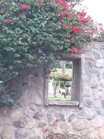 Suite en Hda.Santiago del Rey - Ibarra - Hus