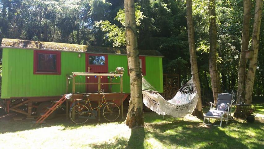 Urlaub im Zirkuswagen