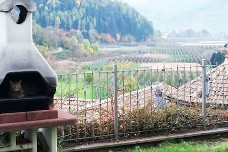 Un Terrazzo sull'Alta Valsugana - Pergine Valsugana