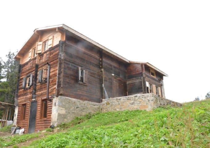 Pokut Tanevit Dağ Evi
