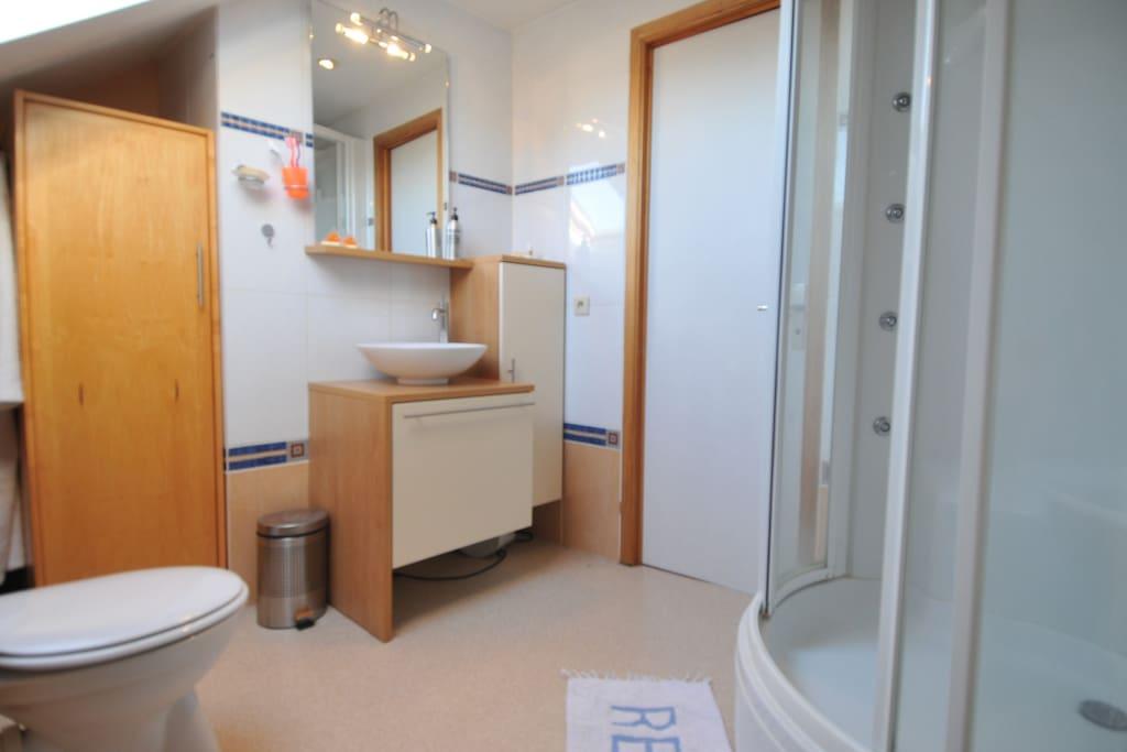 Salle de douche avec WC.