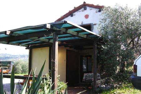 Gartenhaus - Roccastrada - Hus