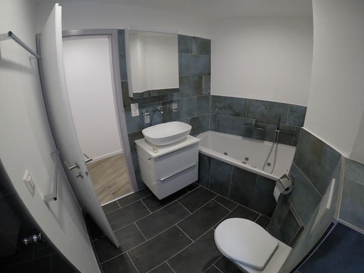 New Modern Renovated Apartment in Basel-Stadt