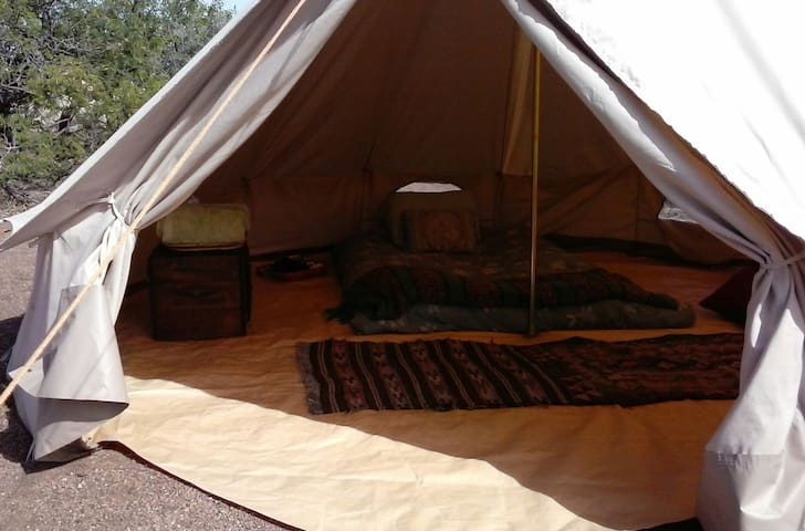 """Gourmet Glamping Getaway - Platform """"Tipi"""" Tent - Tombstone - Bed & Breakfast"""